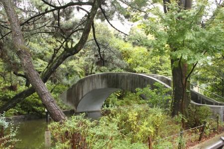 石神井公園の石の橋。中州へ繋がっていて、よく近隣の住民がこのへんを散歩している。