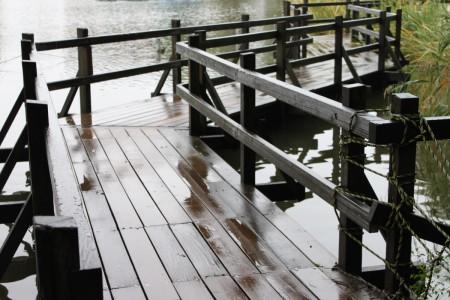 池を見渡せる桟橋。・・桟橋?的ななにか。ぐわぐわ。