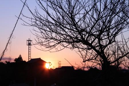 2011年初日の出。