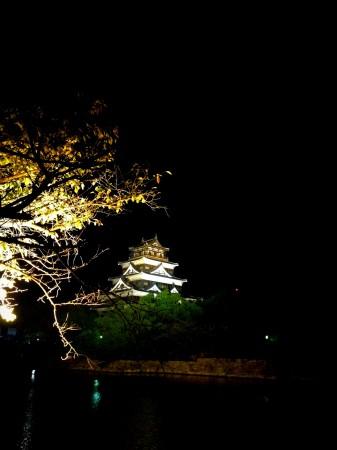 おまけのライトアップ広島城